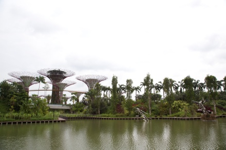 Photograph of Gardens by the Bay